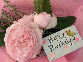 華やかな方にお誕生日の薔薇を!の写真・画像素材[3153345]
