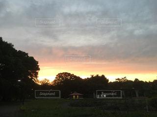 夕焼けの公園の写真・画像素材[2636152]