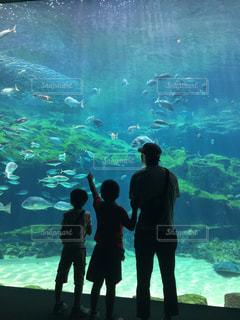 水族館と親子の写真・画像素材[2605742]