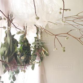 窓際に花の写真・画像素材[3093566]