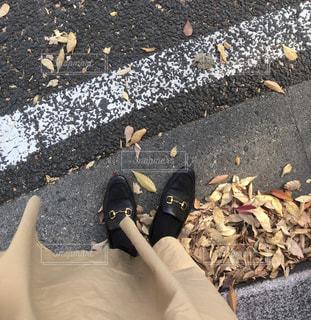 トラッドな秋の写真・画像素材[2712274]