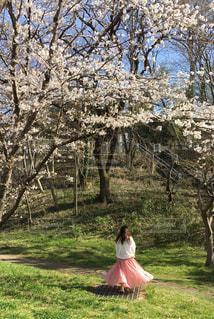 女性,1人,風景,空,公園,花,春,桜,ロングヘア,屋外,ピンク,緑,白,かわいい,綺麗,晴れ,青空,後ろ姿,歩く,景色,サクラ,木々,草,背景,白い,樹木,スカート,背中,人,可愛い,広告,シャツ,桜色,デート,ふんわり,雰囲気,ピンク色,コントラスト,ブラウス,草木,広がる,日中,緑色,さくら,揺れる,フォトジェニック,ロングスカート,ブログ,さくら色,サクラ色,インスタ映え,樹樹,blog
