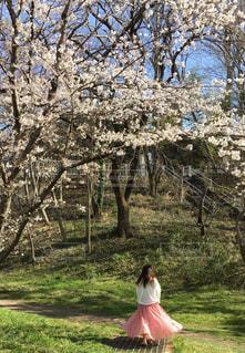 木の隣に立っている人の写真・画像素材[3055119]