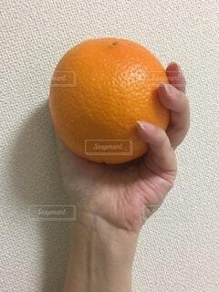 食べ物,屋内,手,オレンジ,手持ち,果物,人物,人,ポートレート,ライフスタイル,手元,柑橘類,皮,柑橘系,ブラッドオレンジ,クエン酸