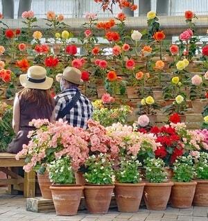 庭のベンチに座っている人々のグループの写真・画像素材[3873508]