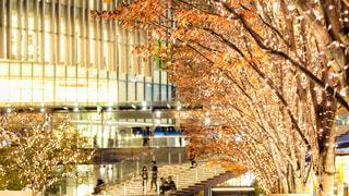 夜景,大阪,イルミネーション,都会,キラキラ,クリスマス,駅前,デート,お出かけ,フォトジェニック,グランフロント大阪,シャンパンゴールド