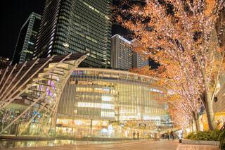 夜景,大阪,都会,キラキラ,クリスマス,駅前,デート,黄金,お出かけ,フォトジェニック,グランフロント大阪,シャンパンゴールド,グランフロントクリスマス