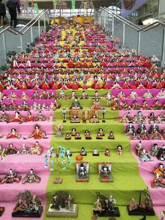 色とりどりの花の群の写真・画像素材[2742712]