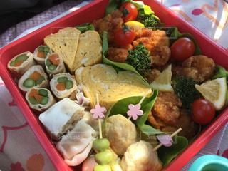 異なる種類の食品で満たされたプラスチック容器の写真・画像素材[3122504]
