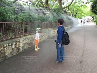暑い夏での、動物園。の写真・画像素材[2612152]