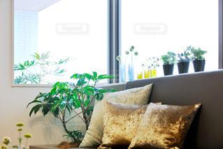 インテリア,クッション,ソファー,お気に入り,窓辺のコーディネート