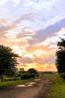 雨あがり夕空の写真・画像素材[1865443]