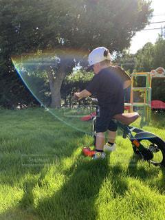 芝生の上での写真・画像素材[2680153]