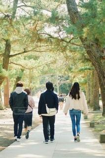 木の隣の通りを歩く人々のグループの写真・画像素材[2792814]