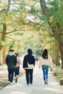 木の隣の通りを歩いている人々のグループの写真・画像素材[3142972]