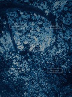 風景 - No.411980