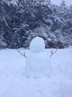 雪だるまの写真・画像素材[2829120]