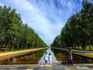 前田森林公園の写真・画像素材[2628098]