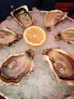 ディナー,旅,フランス,夕食,Paris,海外旅行,生牡蠣,Capucine