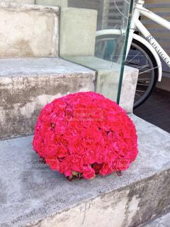 花の写真・画像素材[403695]