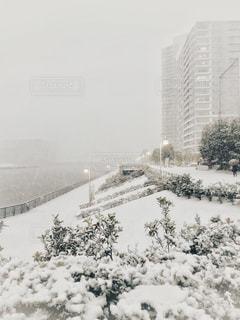 都心の積雪の写真・画像素材[2840782]