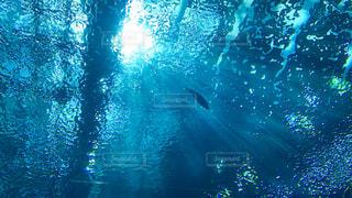 海の写真・画像素材[2641226]