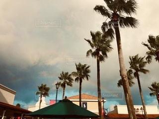 雨と晴の写真・画像素材[2657737]