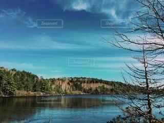 湖畔の写真・画像素材[3348490]