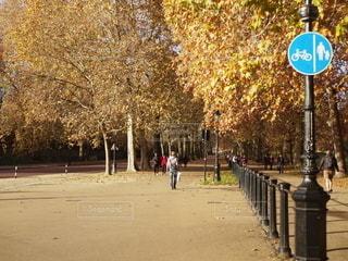 ロンドン市街 秋の歩道の写真・画像素材[2653676]