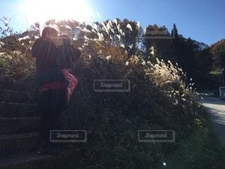 秋の散歩の写真・画像素材[2680055]
