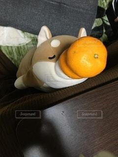 食べ物,屋内,オレンジ,果物