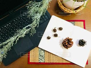 秋,テーブル,机,パソコン,書類,書籍,観葉植物,テーブルフォト,グリーン,仕事,紙,データ,ペーパーワーク
