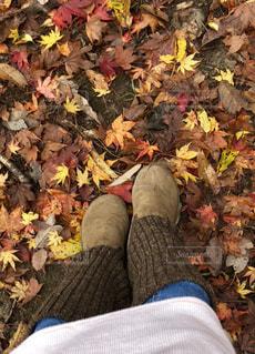 秋の野山にブーツで👢の写真・画像素材[2700827]