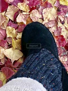 秋にブーツの写真・画像素材[2758348]