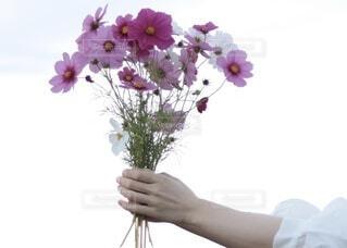 花束3の写真・画像素材[4176152]