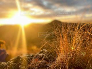 自然,風景,空,屋外,太陽,光,登山,草,日の出,初日の出,草木