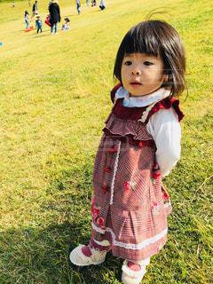 草の中に立っている小さな女の子の写真・画像素材[2695273]