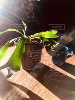 木製のテーブルの上のコーヒーと植物の写真・画像素材[2723289]