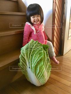 大きな白菜と小さな女の子の写真・画像素材[2814004]