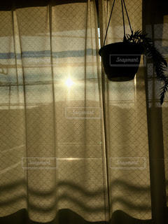 空,屋内,太陽,カーテン,影,光,明るい,シャドウ,カーテン越し