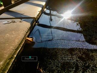 水面に映る太陽の写真・画像素材[2863412]