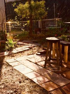 庭のベンチの写真・画像素材[2913029]
