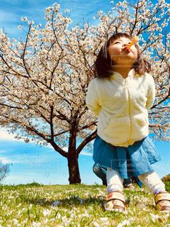 子ども,風景,空,花,桜,屋外,青空,少女,草,シャボン玉,樹木,遊ぶ,人,幼児,さくら,ブロッサム
