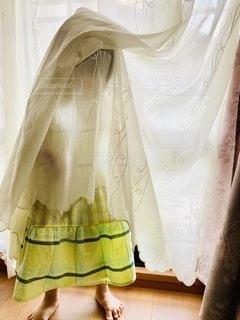 カーテンに隠れる子供の写真・画像素材[3351977]