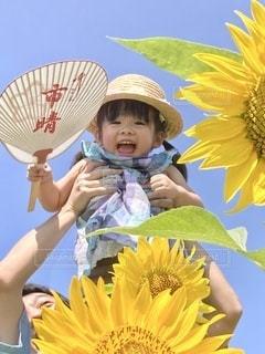 笑顔の女の子とひまわりの写真・画像素材[3513025]