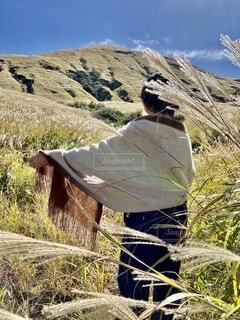 ススキの山でストールをまとう女性の写真・画像素材[3819399]