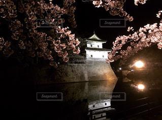 水面に映る桜とお城の写真・画像素材[2718285]