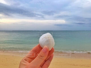 自然,海,屋外,砂,ビーチ,砂浜,貝殻,水面,海岸,手持ち,人物,人,ポートレート,ライフスタイル,手元