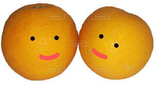 仲良く笑顔の写真・画像素材[3688844]