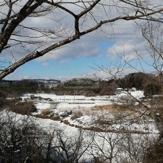 雪が降った翌日の 晴れた空の雪景色の写真・画像素材[4141305]